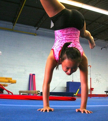 discovery gymnastics discovery gym twitter