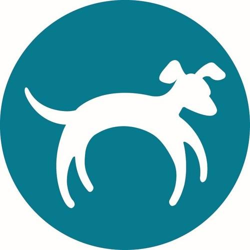 stray dog designs