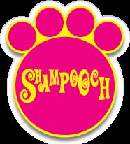 @shampoochuae