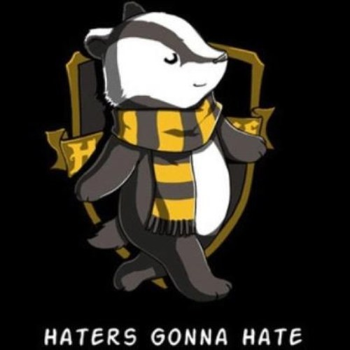 Image result for House of Hufflepuff