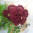 ellenmargaret2's avatar