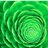 Bright Green Promos