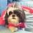 Pinky680's avatar