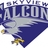 Skyview Falcons
