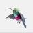 G_hammingbird
