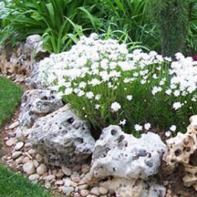 Herme rosado hermerosado twitter - Piedras grandes para jardin ...
