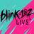 blink182Live