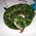 HW_a_pythonista