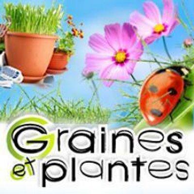 graines et plantes grainesplantes twitter