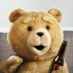 TED_MOVIE2013
