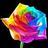 Happy Colors BV