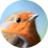 🦉 Birds Wildlife UK 🦋