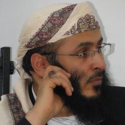 محمد أحمد العامري