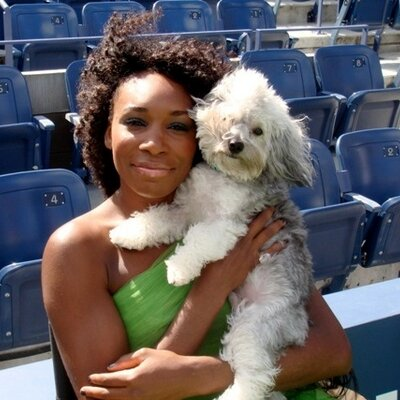 Venus Williams | Social Profile