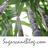 Sugarcane Blog