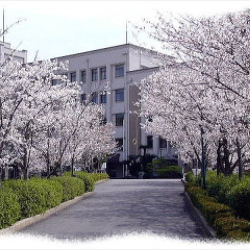 歴史あるエキゾチックな街並みが魅力!長崎市の観光スポット20選 – skyticket 観光ガイド