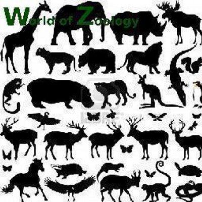 World Of Zoology Worldofzoology Twitter