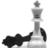Chess Fansclub