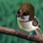 紅の雀のアイコン