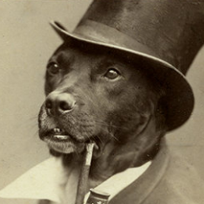 Old Money Dog Original