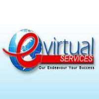 E Virtual Services | Social Profile
