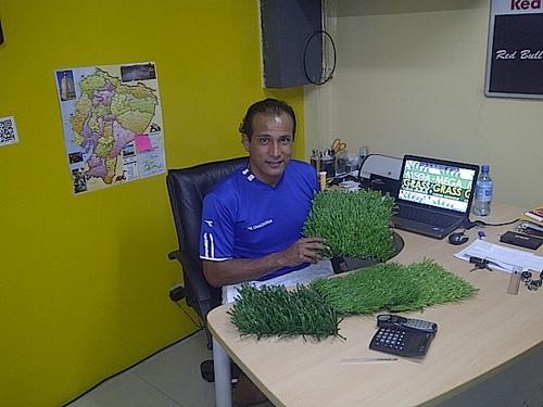 Resultado de imagen para jose gavica