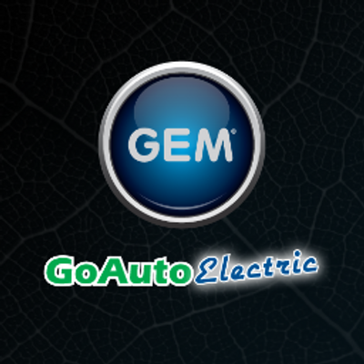 Go Auto Electric