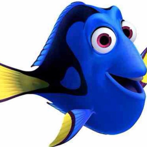 dory the fish hi imdory twitter