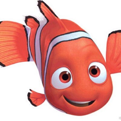 Nemo the clown fish thenem0 twitter for Clown fish nemo