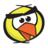 Canary_Dwarf