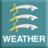Essex Weather Update