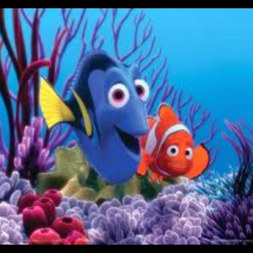 Good Morning Everyone Finding Nemo : Finding nemo quotes on twitter quot good morning everyone
