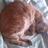 @sea74sweet Profile picture