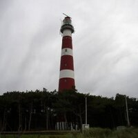 9a842b47718 ameland tagged Tweets and Downloader | Twipu