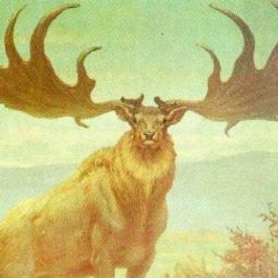 Thranduil Elk