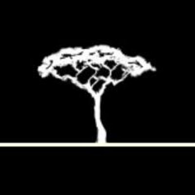 AfricanFossils Twitter Profile Image