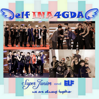 ELF Indonesia 4 GDA | Social Profile
