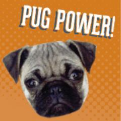 Join the Pugs