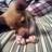 Jeremy Bamford - alvin_levi_john