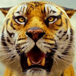 リチャード パーカー Tiger Pijp Twitter