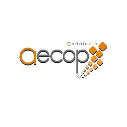 Coaching Ejecutivo - Organizativo y Mentoring