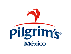 @PilgrimsMexico