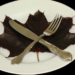 Canadian Cook