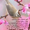 سلطان الغريب (@00958S0s00) Twitter