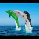 ♡ツآسامه آلحريريツ♡ (@11usam2a) Twitter