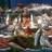 pescheria galluzzi