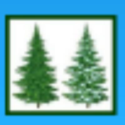 整骨 院 もみ の 木