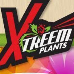 Xtreem Plants