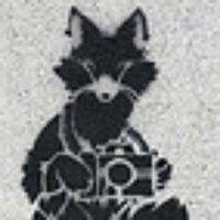 trust-a-fox-photo