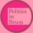 politicsinbrum retweeted this